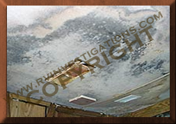 rv ceiling mold